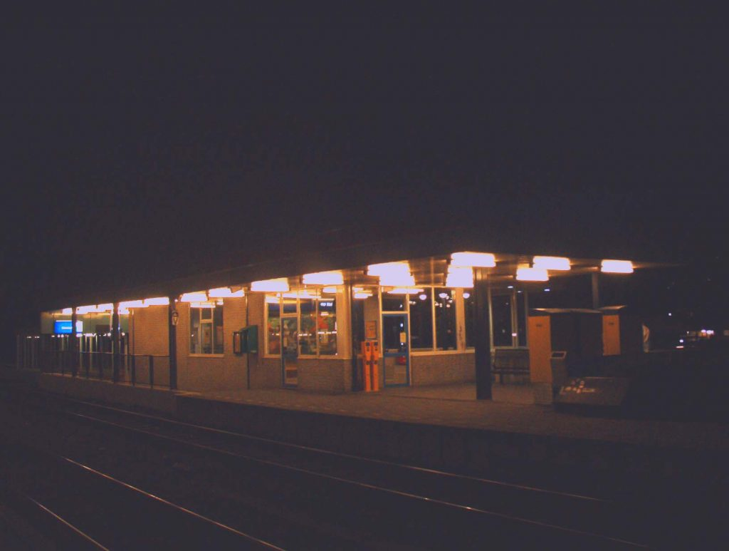 koog bloemwijk nacht 01