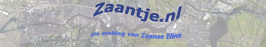 Zaantje